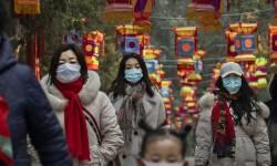ચીનમાં મહામારી પર જીત હાંસલ કરવાનો જશ્ન : કુતરા અને બિલાડીનું માસ વેચાઈ રહ્યું છે