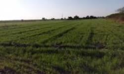 ગુજરાતમાં જમીન હસ્તાંતરણના 62 વિવાદો: 96 હજાર કરોડનું રોકાણ ફસાયું