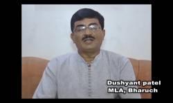 'મુસ્લિમ યુવકો સાથે લગ્ન કરનારી હિંદુ યુવતીઓને વેશ્યાવૃત્તિમાં ધકેલી દેવાય છે', ગુજરાત ભાજપના ધારાસભ્યનો આક્ષેપ