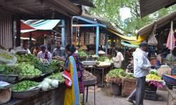 ગુજરાતમાં દૂધ-દહીં, કરિયાણું, શાકભાજી-ફળ, લોટની ઘંટી રોજ ક્યા સમયે ખુલ્લી રહેશે? જાણો ટાઈમ ટેબલ