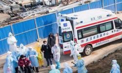 ચીનમાં કોરોના વાયરસે ફરી રફતાર પકડી : જીત મેળવ્યાના દાવા સૂરસૂરિયું સાબિત થયા, નવા 63 કેસ
