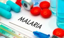 મેલેરીયા વિરોધી (એન્ટી ડોટ ) દવાના ઉત્પાદનમાં વિશ્વભરમાં ભારત મોખરે
