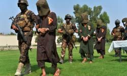 અફઘાનિસ્તાનમાં મોટાભાગના આંતકીનો સફાયોઃ માઇક પોમ્પીઓ