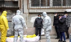 દુનિયાભરમાં કોરોના વાયરસને કારણે 88 હજારથી વધુ લોકોના મોત