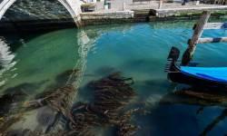 હવે પેરિસમાં પાણીમાં મળ્યો કોરોના વાયરસ, 27માંથી 4 સેમ્પલ પોઝીટીવ