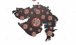 અમદાવાદમાં વધુ 8 પોઝિટિવ કેસ નોંધાયા, ગુજરાતમાં કોરોનાના કુલ કેસ 82