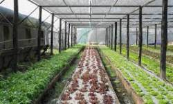 ગુજરાતમાં ખેતી, ઉદ્યોગ, બાંધકામ વગેરેમાં શરતી છુટછાટનો માસ્ટરપ્લાન તૈયાર