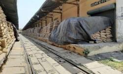 ગભરાશો નહીં! ગુજરાતમાં અનાજનો જથ્થો પર્યાપ્ત, રોજના 12 હજાર ટન ઘંઉ-ચોખાની આવક