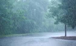 ધરમપુર કપરાડા વિસ્તારમાં પવન સાથે વરસાદી ઝાપટા