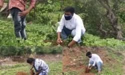 કપરાડાના અરણાઈ ગામમાં હિંદુ યુવાવાહિની અને પર્યાવરણ રક્ષક સમિતિએ 200 વૃક્ષોનું વાવેતર કર્યું