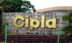 સિપ્લા ઓગસ્ટમાં લોન્ચ કરશે Ciplenza, કોરોનાને આપશે માત! આટલી હશે કિંમત