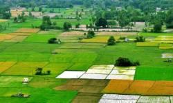 RUPANI SARKAR: ગુજરાતમાં જમીનની ખરીદી માટે ખેડૂત હોવું જરૂરી નથી, ઉંચકાશે ભાવ