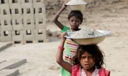 ગુજરાતમાં 1.30 લાખ બાળકો ખેતમજૂર તરીકે કાર્યરત : NGO