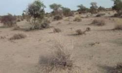 ગ્રા.વિ. એક લાખ ચોરસ મીટરથી વધુ જમીનના પ્લાન પાસ કરાવવા ની સતા હવે નાયબ નગર નિયોજકને