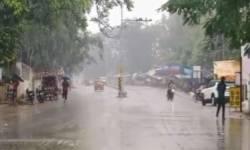 ગુજરાતના આકાશમાં ધુમ્મસની ચાદર છવાઈ, 24 કલાકમાં 142 તાલુકામાં કમોસમી વરસાદ પડ્યો