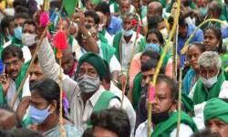 ખેડૂતોએ સરકારનો પ્રસ્તાવ ઠુકરાવ્યો : ત્રણેય કાયદાઓ પરત ખેંચવાની માગ પર અડગ