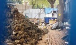 મુંબઈ હાઈકોર્ટે જનહિતની અરજી ફગાવતાં ૯૨૦ કરોડની ટનલનો માર્ગ મોકળો