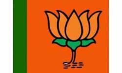 ઉમલ્લા,ઝઘડીયા,રાજપારડીમાં BJPની બેઠક