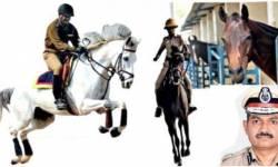 ગુજરાત પોલીસનો 'હોર્ષ પાવર' વધશે : વધુ 130 અશ્વો ખરીદવા માટેની તૈયારી