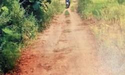 સોનગઢ તાલુકાના સાદડકૂવામાં માર્ગો અને ટાંકીના કામો અધૂરા છતાં બીલો પાસ કરાવી ભ્રષ્ટાચાર આચરાયો હોવાની રાવ