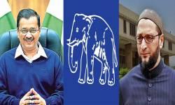 ગુજરાતના રાજકારણમાં AAP-AIMIM બન્યા ત્રીજો વિકલ્પ, શું ડગમગશે ભાજપનો ગઢ?