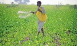 ખેડૂતોને ફટકો : ખાતરના ભાવમાં 700 રૂપિયાનો વધારો, ભાજપ ભાષણોથી ચાલશે ખેડૂતોની ખેતી નહીં