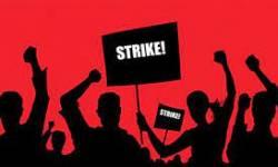 સોનગઢ નગરપાલિકાના સફાઈ કામદારો વિવિધ માંગણીઓને લઈને હડતાલ પર ઉતર્યા