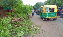 તૌકતે વાવાઝોડાથી ગુજરાતમાં મૃત્યુઆંક વધ્યો, 45 લોકોનો જીવ લીધો