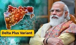 કેન્દ્ર સરકારે ડેલ્ટા+ વેરિઅન્ટને લઇ ગુજરાત સહિત 8 રાજ્યોને કર્યા એલર્ટ