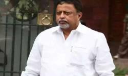 પાટલીબદલુ મુકુલ રોયએ કહ્યું કે પશ્ચિમ બંગાળમાં BJPના 25-30 ધારાસભ્યો, બે સાંસદ TMCના સંપર્કમાં
