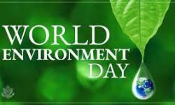વિશ્વ પર્યાવરણ દિવસ : લોકડાઉનમાં કચરો મુસીબત બન્યો