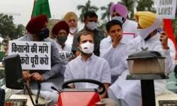 જે ટ્રેક્ટર પર સંસદ પહોંચ્યા હતા રાહુલ ગાંધી તેને પોલીસે લીધું કબજામાં, અનેક નેતા કસ્ટડીમાં