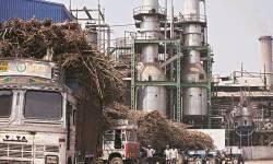 સુગર ફેકટરીઓને લઈ ગુજરાત હાઇકોર્ટનો મહત્વપૂર્ણ ચુકાદો
